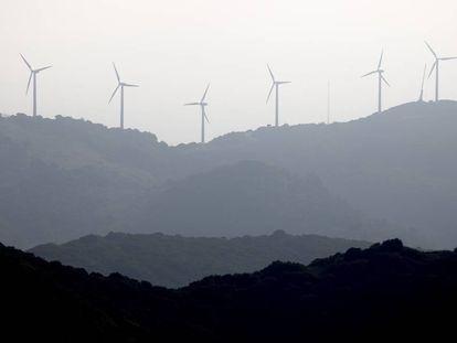 A wind farm in Algeciras (Cadiz).