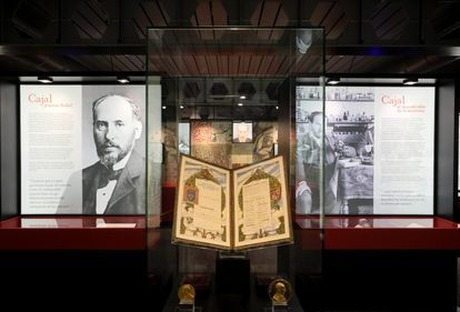 The Madrid exhibition displays Ramón y Cajal's diploma and the Nobel Prize for Medicine's gold medal, together with the Helmholtz medal, awarded to the Spanish scientist in 1905.
