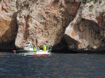 'Trasmalleros' pull up their trammel nets near Morro Toix, in Altea.