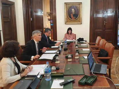 Interior Minister Fernando Grande-Marlaska (l) holds a video conference meeting on Monday.