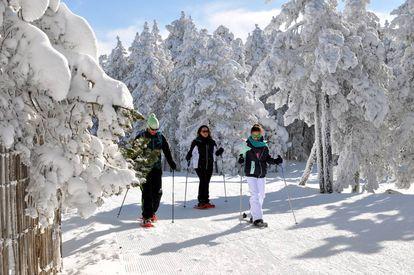 A snowshoe hike at the Cerler ski resort in Huesca.