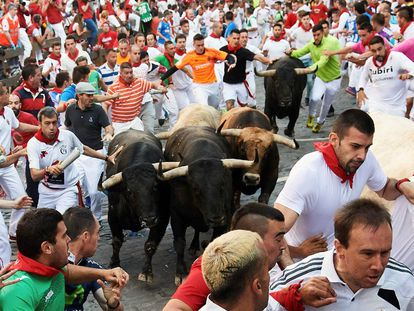 Day 5 of the Running of the Bulls.