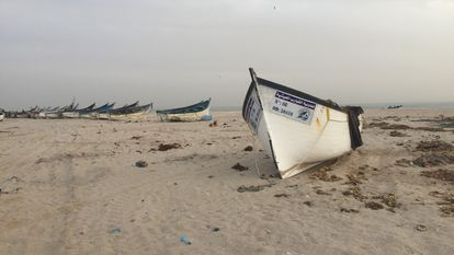 Boats in the fishing district of Lassargas, in Dakhla.