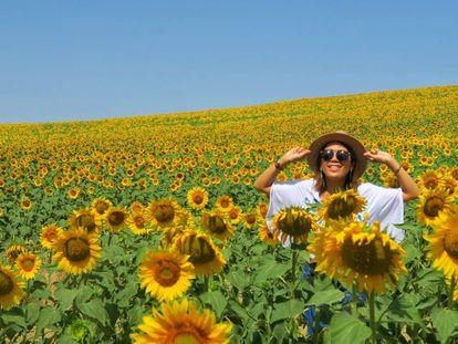 A Japanese tourist in the sunflower fields of Carmona, Sevilla.