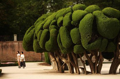 Visitors to the Parterre, the Retiro's French-inspired gardens.