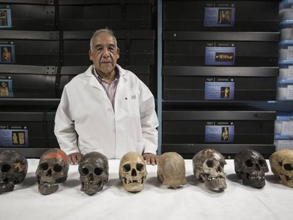 Anthropologist José Jiménez with the eight oldest skulls in the Americas.