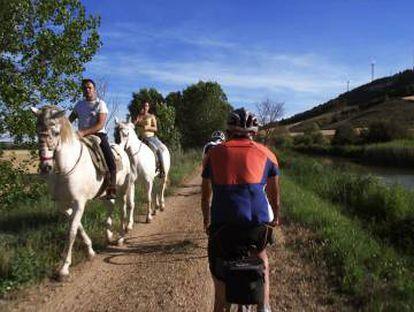 Horses and bikes along the Canal de Castilla.