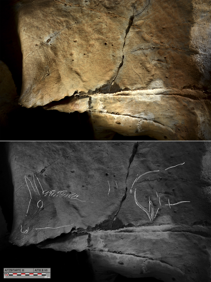 The depiction of the animals' limbs had no perspective or depth.
