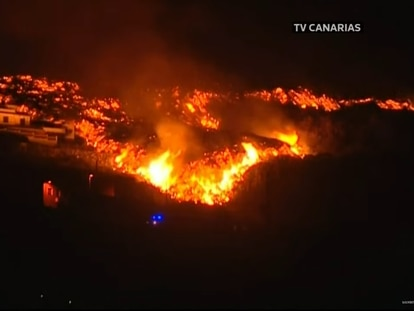 Video   The eruption of the volcano in La Palma, live