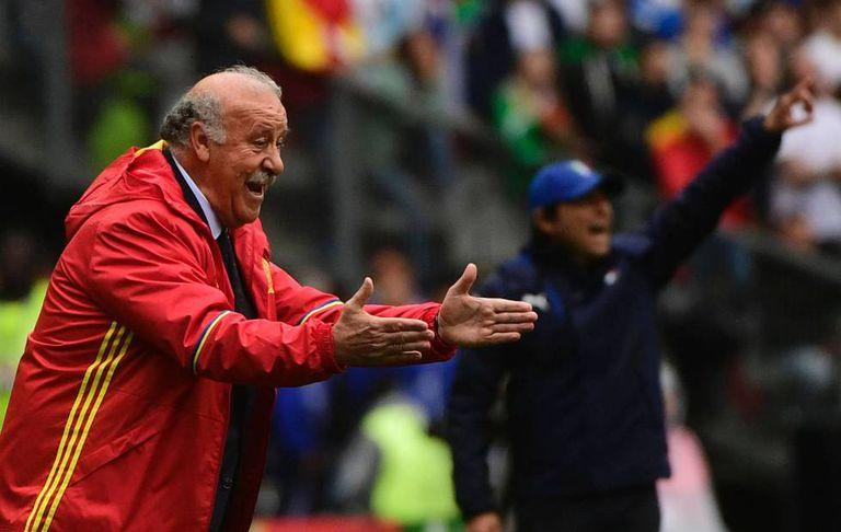 Spain's national soccer coach, Vicente del Bosque.