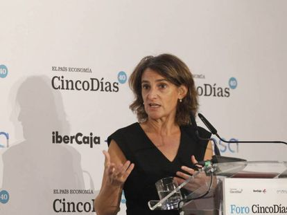 Teresa Ribera, one of Spain's deputy prime ministers and the minister for environmental transition.