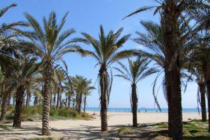 Pinar Beach in Castellón, in Spain's Valencia region.