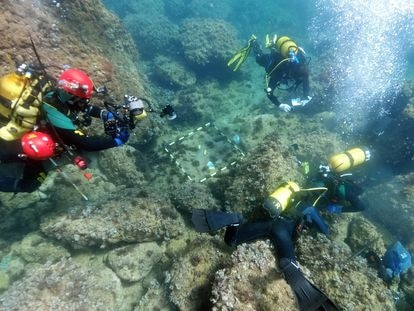 Underwater archaeologists from Alicante University searching the area where two amateur divers found Roman coins