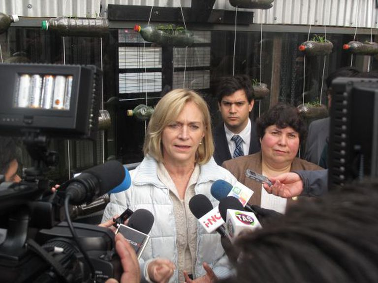 Chile's former Social Planning Minister Evelyn Matthei has caused rifts among conservatives.