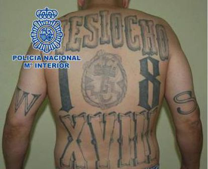 The suspect's tattooed back, in a police shot.