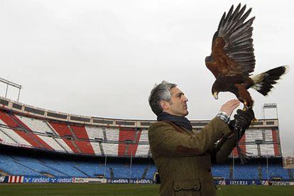 Jorge Castaño, with his eagle Bárbara in Vicente Calderón stadium.
