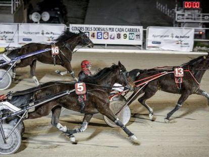 A race at Son Pardo Hippodrome in Palma de Mallorca in 2013.