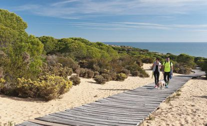 Walkway in Doñana, Almonte (Huelva).