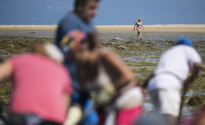A bather and shellfish-catchers on the beach of Vilanova de Arousa (Pontevedra).