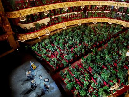 A concert for nearly 2,300 plants at Barcelona's opera house.