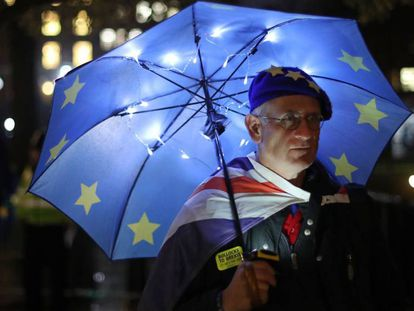 A Remain supporter demonstrates in front of Westminster.