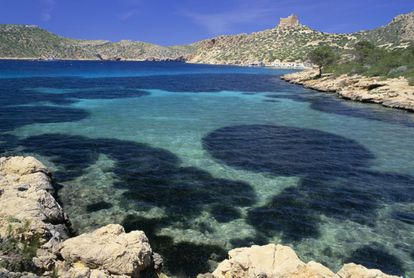 This shoreline national park belongs to Palma de Mallorca and consists of a mass of small islands that have managed to conserve their Mediterranean ecosystem. With endemic flora such as Balearic astragalus, this park is home to colonies of seabirds – it has been denominated a ZEPA (Special Protection Zone for Birds) and has one of the best-conserved seabeds on the coast.