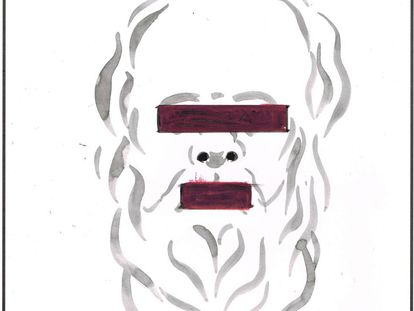 "Plato: ""Neurosciences have us in a corner!"""