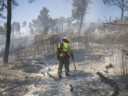 The Sierra Calderona wildfire of June 2017.