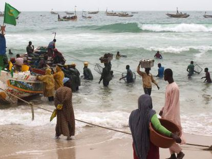 Fishing boats unload their catches in the Mauritanian capital of Nouakchott.