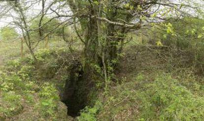 Sima de Legarrea, the pit where the human remains were found.