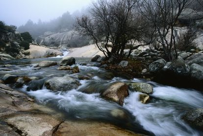 Stretching over 33,960 hectares, the Sierra de Guadarrama between Madrid and Segovia was declared a national park in 2013. Featuring lakes and rivers, pine forests and waterfalls, it is another example of the natural ecosystems of the Mediterranean mountains where wolves, Golden Eagles and black storks thrive.