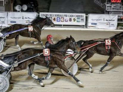 A harness race at the Son Pardo racetrack in Palma de Mallorca in 2013.
