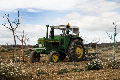 A tractor on the Las Marismas farm.