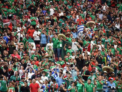 Mexican fans during a Copa América game.