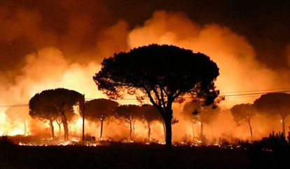 The blaze burns near Moguer (Huelva) on Sunday night.