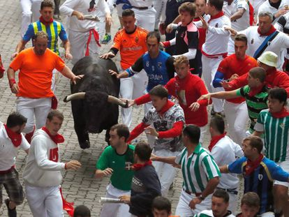 A bull among the runners at the fifth Running of the bulls at Sanfermines 2017.