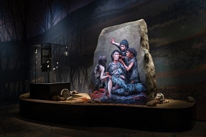 A special exhibition on the Neanderthals in Mosegaard Museum in Denmark.