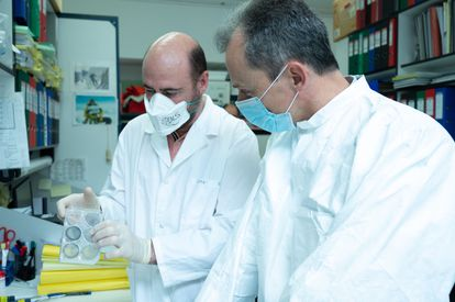 The researcher Mariano Esteban (l) and Science Minister Pedro Duque at the National Biotechnology Center.