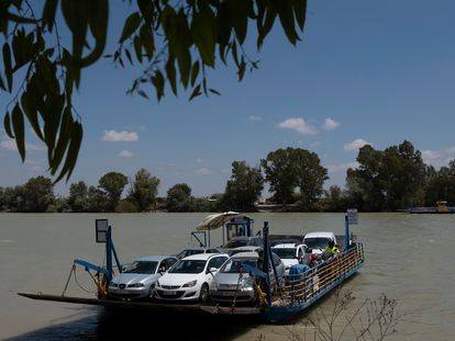 A barge crosses the Guadalquivir, in Coría del Río, one of the areas where the outbreak has been detected.