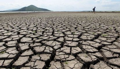 A drought in Thailand, 190km outside Bangkok.