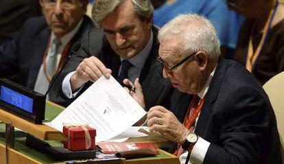 Foreign Minister José Manuel García-Margallo during the UN vote.