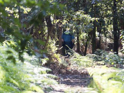 Civil Guard officers comb the area where Asunta's body was found.