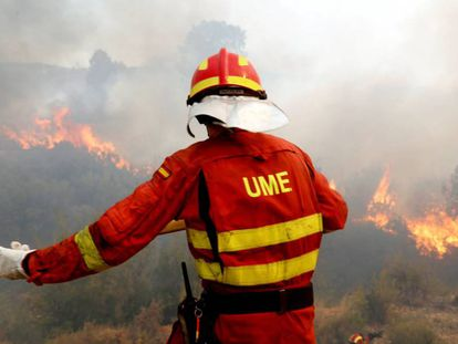 A firefighter tries to extinguish a forest fire in Llutxent.