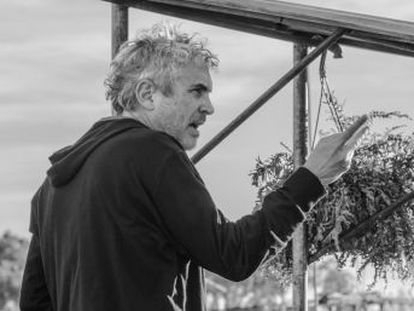 The much-awaited 'Roma' from Alfonso Cuarón will premier tonight, while the jury will be presided by Oscar-winner Guillermo del Toro