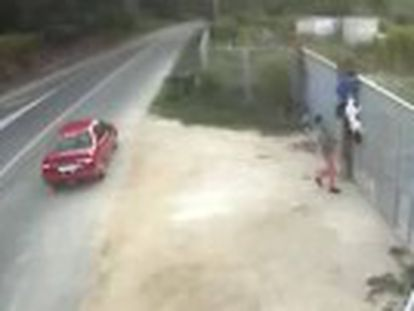 Galician animal protection group files complaint after two men are caught on camera abandoning a pet by hurling it over its fence