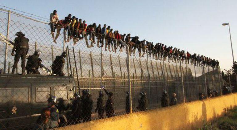 Dozens of migrants atop the Melilla border fence.