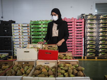 Lamia Azzi, the daughter of the Moroccan owners of Frutas Azahara, at the company warehouse.