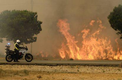 Flames near Mazagón in Huelva province in southern Spain.
