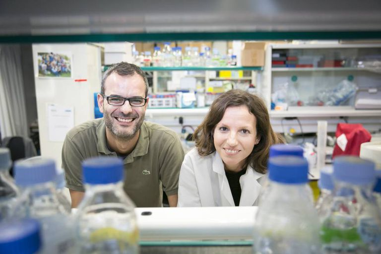 IRB researchers Salvador Aznar and Gloria Pascual.
