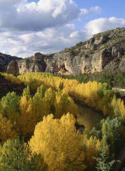 Gorges overlooking the river in Hoces del Júcar (Cuenca).